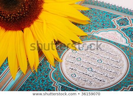 roseflower put on holy islam book koran stock photo © zurijeta
