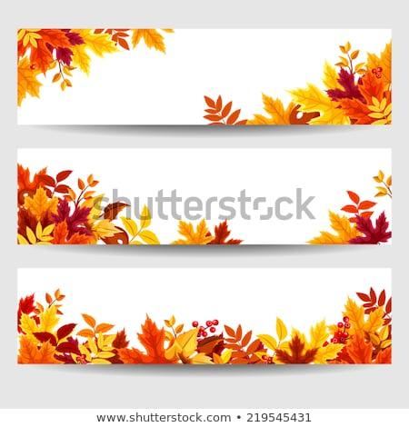 automne · feuillage · automne · tête · texte · eps - photo stock © limbi007