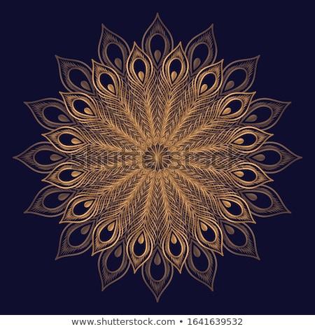 Or paon plumes or bijoux bleu Photo stock © blackmoon979