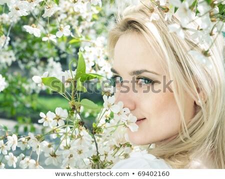красивой блондинка девушки весны Вишневое саду Сток-фото © Yatsenko