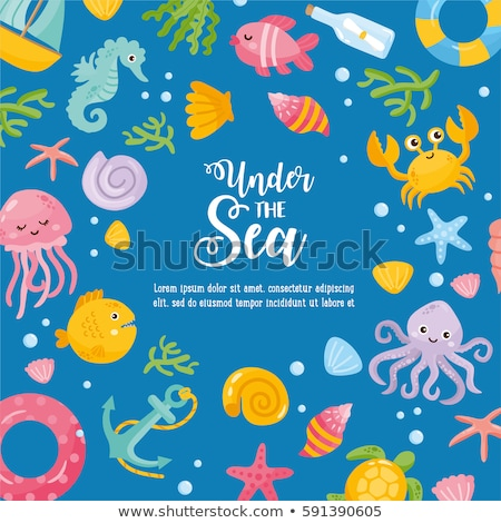 Frame design with seashells and starfish Stock photo © bluering