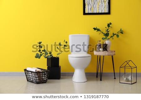 white modern toilet bowl Stock photo © ssuaphoto