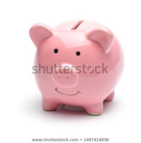 Rosa cerâmico piggy bank isolado branco dinheiro Foto stock © pakete