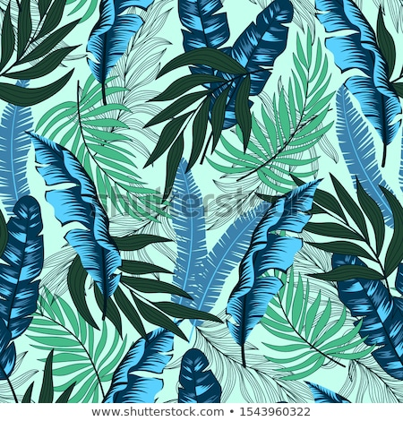 hand drawn of tropical plants and flower stock photo © mamziolzi
