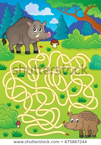 Labirinto porcos feliz porco animal Foto stock © clairev