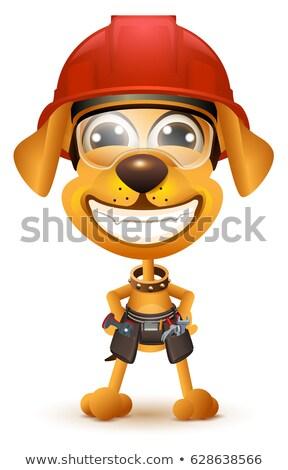 Labor day. Yellow dog builder in protective helmet smile Stock photo © orensila