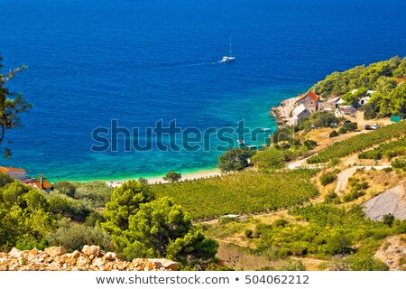 town of bol on brac island turquoise seafront view stock photo © xbrchx