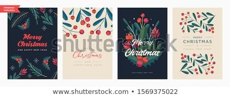 Stockfoto: Christmas · winter · briefkaart · witte · groene · vallen