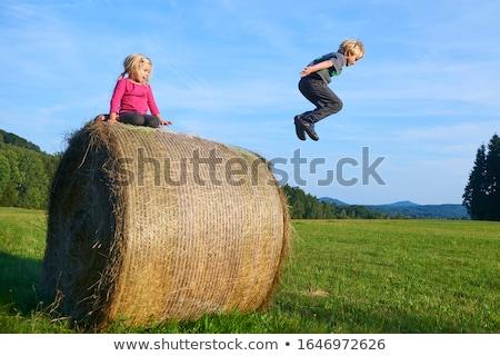 Lány fiú széna bála fut energia Stock fotó © IS2