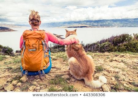 femme · randonneur · chien · regarder · mer - photo stock © blasbike
