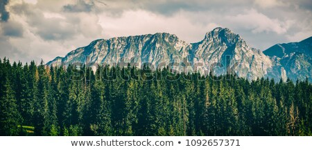 Inspirador montanas paisaje nublado día verano Foto stock © blasbike