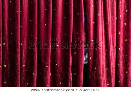 Gap in curtains Stock photo © IS2