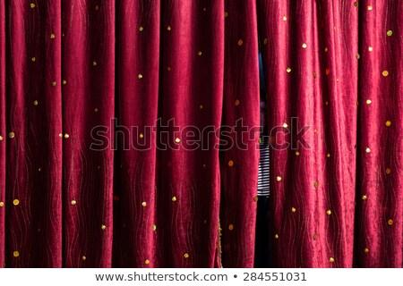 Boşluk perde pencere gizem Stok fotoğraf © IS2