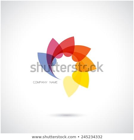 kleurrijk · bloem · logo-ontwerp · ontwerp · blad · corporate - stockfoto © krustovin
