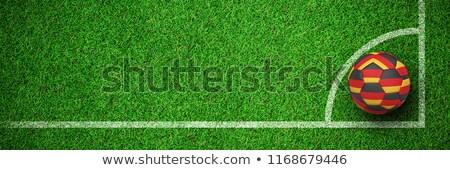 Football couleurs vue gazon herbe Photo stock © wavebreak_media