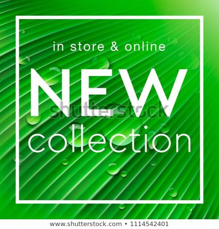 Nowego kolekcja social media szablon sklep internetowy zielone Zdjęcia stock © ikopylov