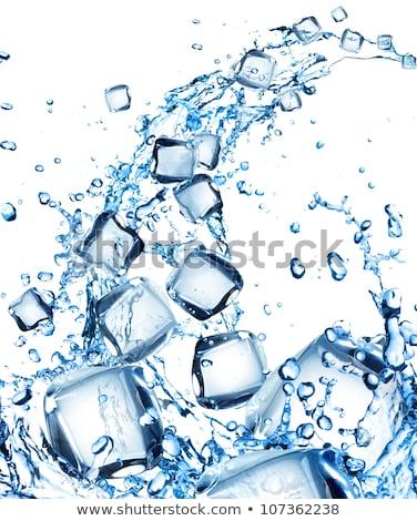 üveg víz jégkockák nyár csepp tiszta Stock fotó © Zerbor