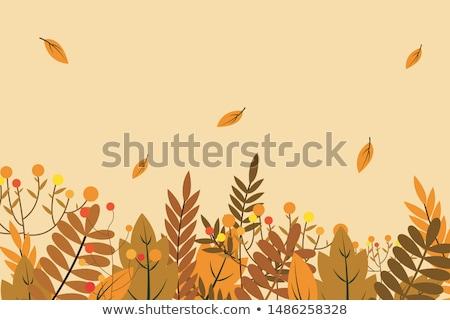 wyschnięcia · liści · charakter · ilustracja · zielone · jesienią - zdjęcia stock © svvell