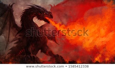 ストックフォト: 火災 · 龍 · 翼 · 燃焼 · 炎のような · パターン