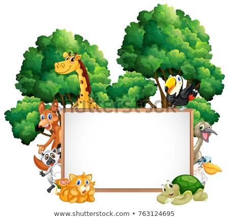 Fakeret sablon illusztráció természet tájkép kert Stock fotó © colematt