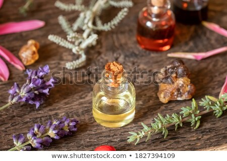 bottles of essential oil with frankincense lavender thyme stock photo © madeleine_steinbach