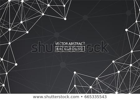 abstrato · linhas · criador · projeto · construção · luz - foto stock © designleo