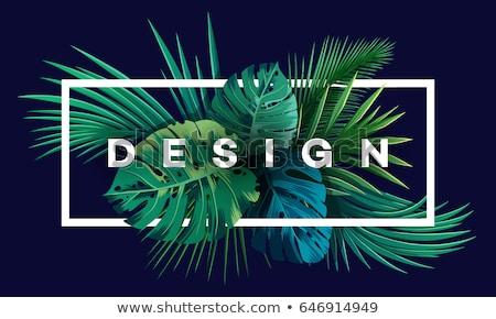 groene · bladeren · gestreept · naadloos · textuur · patroon · achtergrond - stockfoto © robuart