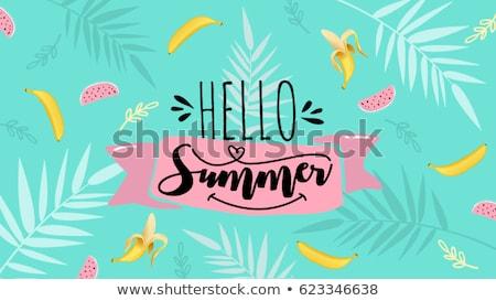 Alo vară soare natură fundal călători Imagine de stoc © SArts