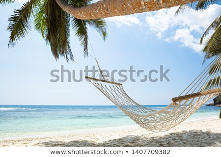 Anse Baleine Beach, Mahe Island, Seychelles Stock photo © AndreyPopov