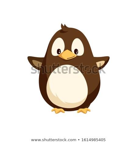 cartoon · pinguino · cute · facile · bambini - foto d'archivio © robuart
