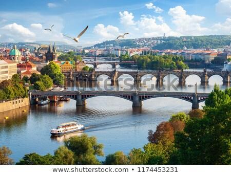 görmek · köprüler · panorama · Prag · gökyüzü · su - stok fotoğraf © givaga