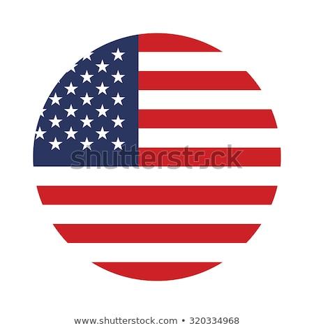 Amerikai zászló ikon izolált integet Egyesült Államok Amerika Stock fotó © Valeo5