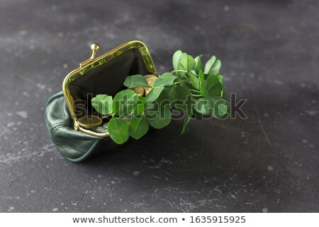 close up of golden coins and green shamrock leaf stock photo © dolgachov