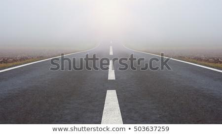 Drogowego mglisty rano piękna krajobraz lasu Zdjęcia stock © iko