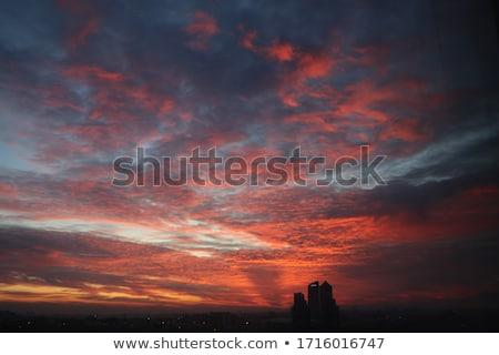 Sun on the horizon Stock photo © jsnover
