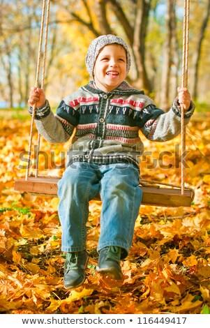 возбужденный мало мальчика Swing Открытый Сток-фото © galitskaya