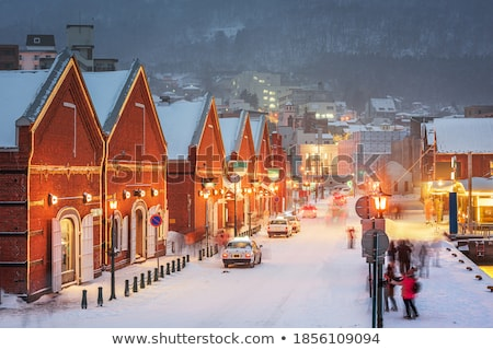 Winter Cityscape at Night, Evening in Wintry Town Stock photo © robuart