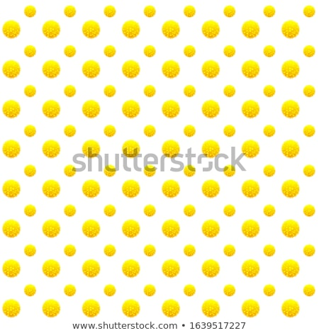 Mimosa fluffy bud yellow flower seamless pattern Symbol Women s Day Stock photo © orensila
