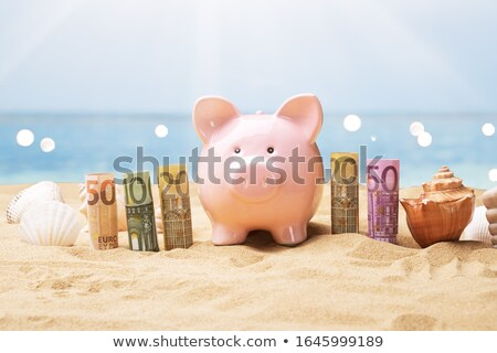 Euro bankjegyek persely napos tengerpart tenger Stock fotó © AndreyPopov