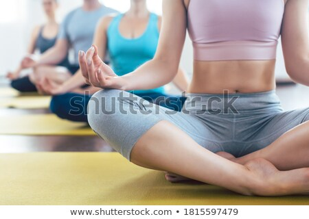People meditating during yoga in easy seat pose Stock photo © Kzenon