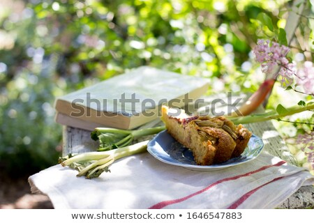 Saboroso caseiro ruibarbo jardim relaxar Foto stock © laciatek