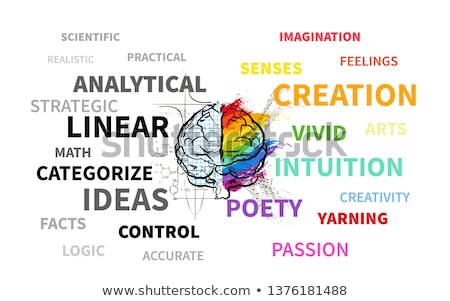 Technical and creative hemispheres on human brain, text infographic on white Stock photo © evgeny89