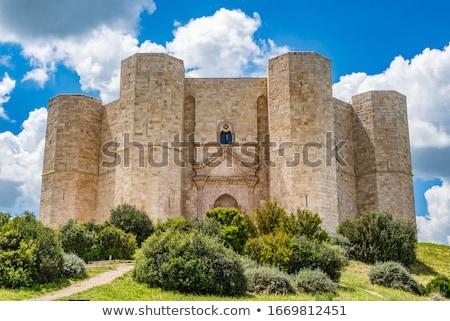 Castel del Monte, Apulia Stock photo © aladin66