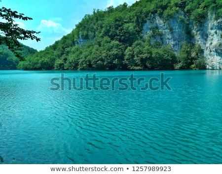 Lazur jezioro górskich sosny lasu charakter Zdjęcia stock © RuslanOmega