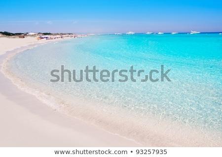 łodzi · tropikalnej · plaży · pionowy · krajobraz · morza · dłoni - zdjęcia stock © lunamarina