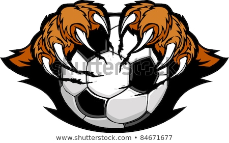 Ballon tigre vecteur image Photo stock © chromaco