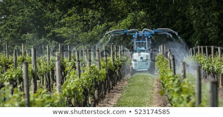 trator · campos · vegetal · horizonte · nuvens · roda - foto stock © njaj