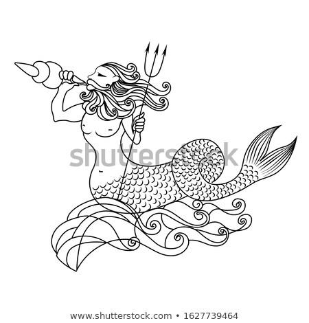 Stockfoto: Mooie · zeemeermin · vector · zee · haren