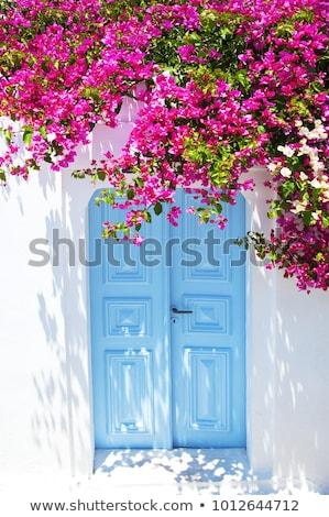 shutters of a house santorini greece stock photo © elenarts