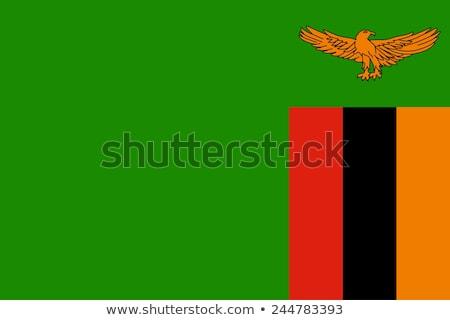 Zászló Zambia integet szél világ felirat Stock fotó © creisinger